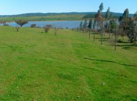 VENDIDO!! Propiedades 0,5 hectáreas, Sector Marchigue