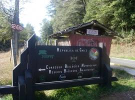 Parcela En Lago Caburgua