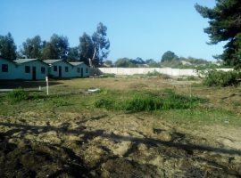 Excelente Terreno + 4 Cabañas + 1 Casa Las Cruces, Oportunidad Proyecto Inmobiliario