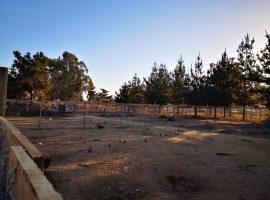 Se Venden Terrenos En El Tabo