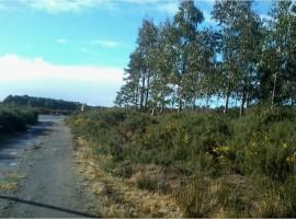 Venta De Terrenos En Chiloe