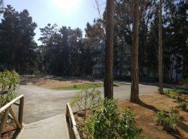 Departamento Bosques del Tabo, Edificio Don Victor
